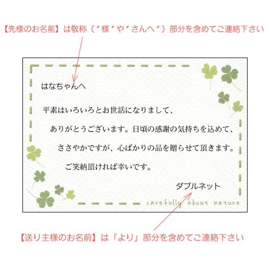 挨拶状 メッセージカード グリーン 画像2
