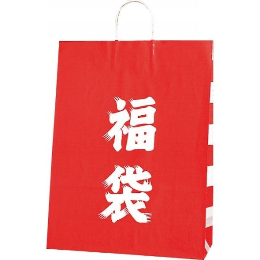 福袋(L) ペーパーバッグ 38×15×50cm #3280310 画像1