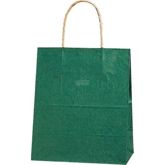 紙袋 カラーバッグ ペーパーバッグ 無地 (XS) 緑 21×12×25cm #3266302 画像1