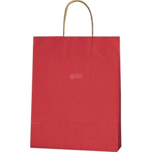 紙袋 カラーバッグ ペーパーバッグ 無地 (SS) 赤 27×8×34cm #3276803 画像1