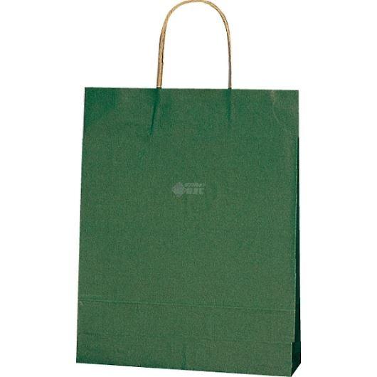 紙袋 カラーバッグ ペーパーバッグ 無地 (SS) 緑 27×8×34cm #3276805 画像1