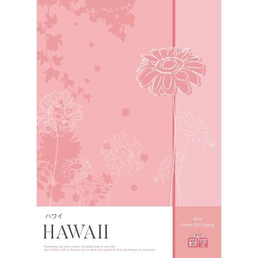 アプコ 選べるカタログギフト ハワイ 3888円コース 画像1