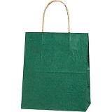 紙袋 カラーバッグ ペーパーバッグ 無地 (XS) 緑 21×12×25cm #3266302
