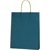 紙袋 カラーバッグ ペーパーバッグ 無地 (SS) 紺 27×8×34cm #3276804