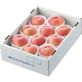 山形県産 白桃(10〜12玉)