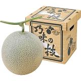北海道 中富良野産 巧味の技メロン1玉