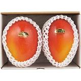 沖縄県産 マンゴー 2玉
