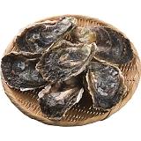 岩牡蠣3種食べ比べセット・生食用(6個)