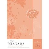 アプコ 選べるカタログギフト ナイアガラ 54648円コース